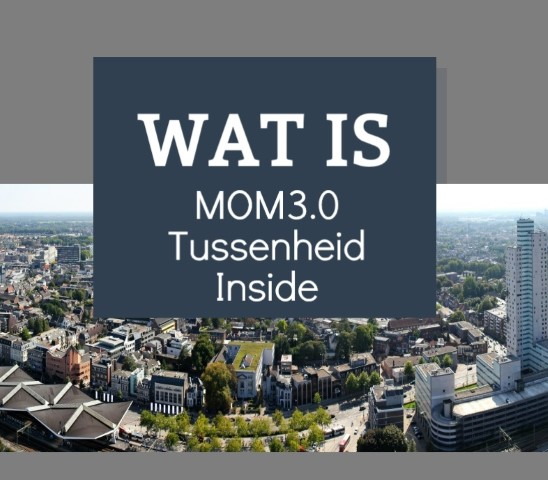 Infographic: Wat Doet MOM3.0 Tussenheid Inside